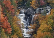 Pendleton Run Falls in Blackwater Falls State Park