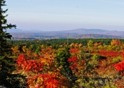 Dolly Sods in October